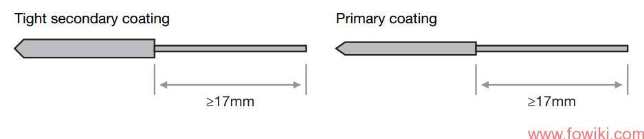 Cleaved-Fiber-Length