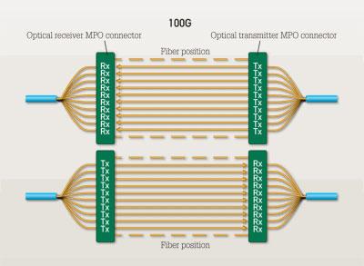 100g-network